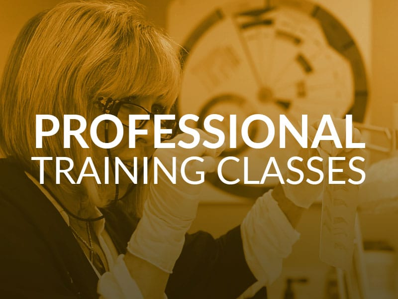 Professional Training